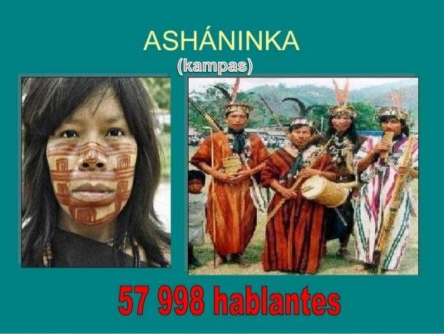 ACTIVIDAD ECONOMICA •  La agricultura es la principal actividad económica de los campas asháninkas, siendo los principales...