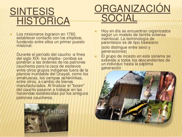2. INFORMACIÓN DEMOGRÁFICA:   Los 5545 huambisas censados representan 2,31% del total de la población indígena empadronad...