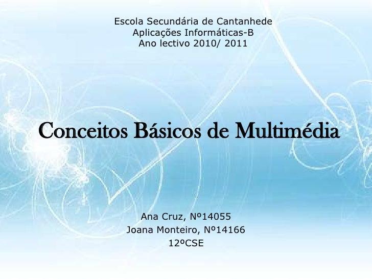 Escola Secundária de Cantanhede<br />Aplicações Informáticas-B<br />Ano lectivo 2010/ 2011<br />Conceitos Básicos de Multi...