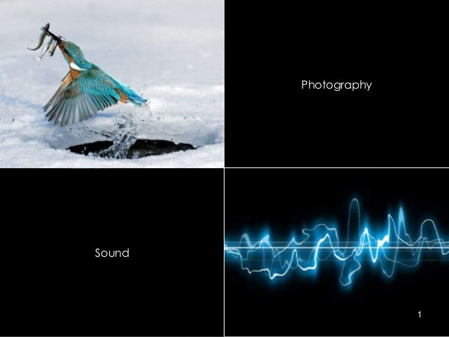 Photography  Sound  1