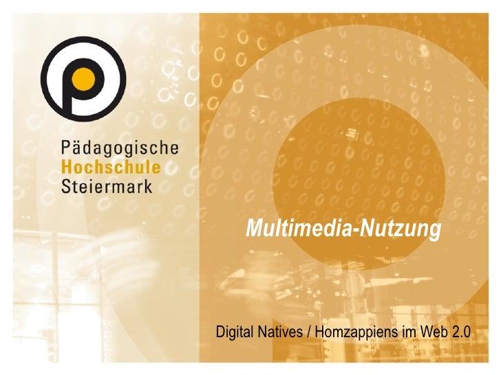 Multimedia-Nutzung Digital Natives / Homzappiens im Web 2.0
