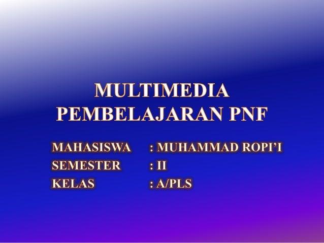 Multimedia pnf individual