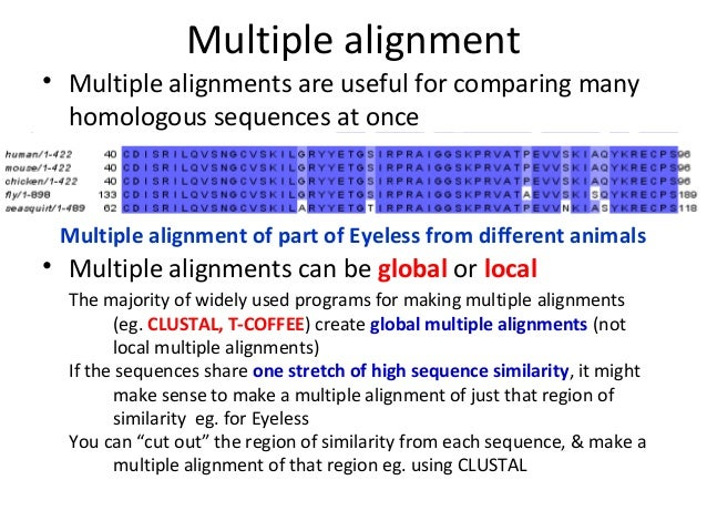 Multiple sequence alignment. Terminology n motif: the biological.