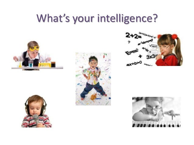 What's your intelligence?