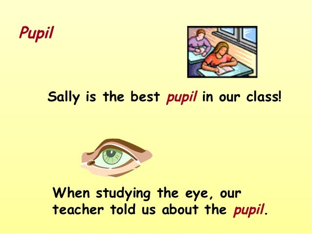 Pupil    Sally is the best pupil in our class!        When studying the eye, our        teacher told us about the pupil.