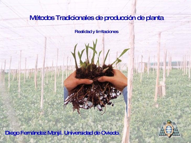 Métodos Tradicionales de producción de planta Realidad y limitaciones Diego Fernández Monjil. Universidad de Oviedo.