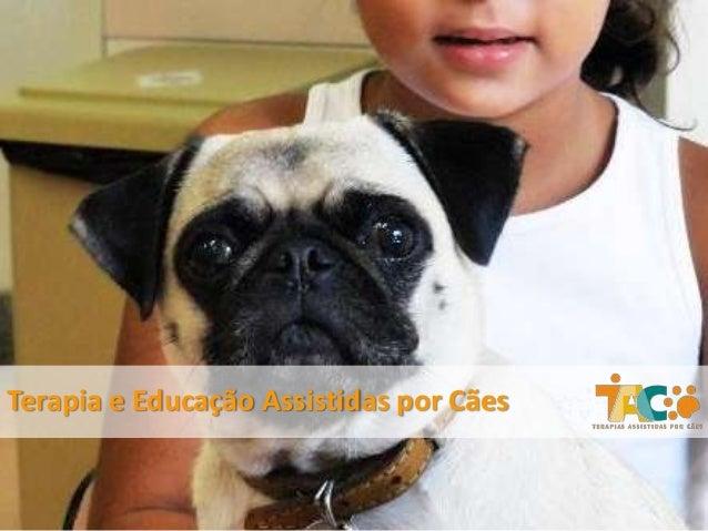 Terapia e Educação Assistidas por Cães
