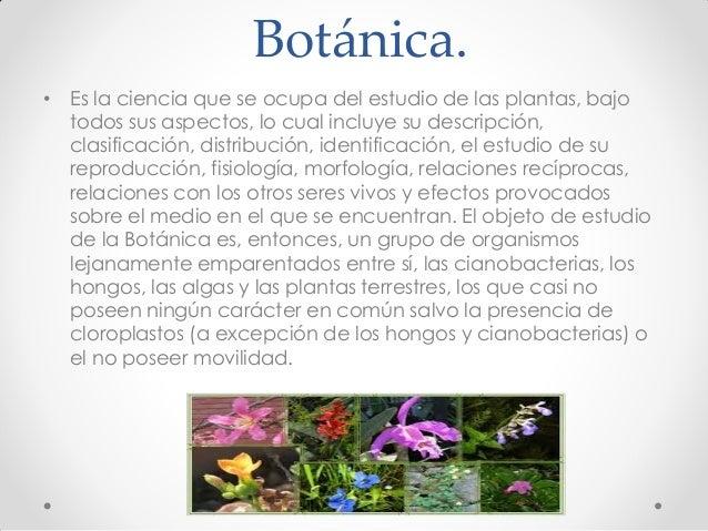 Botánica. • Es la ciencia que se ocupa del estudio de las plantas, bajo todos sus aspectos, lo cual incluye su descripción...