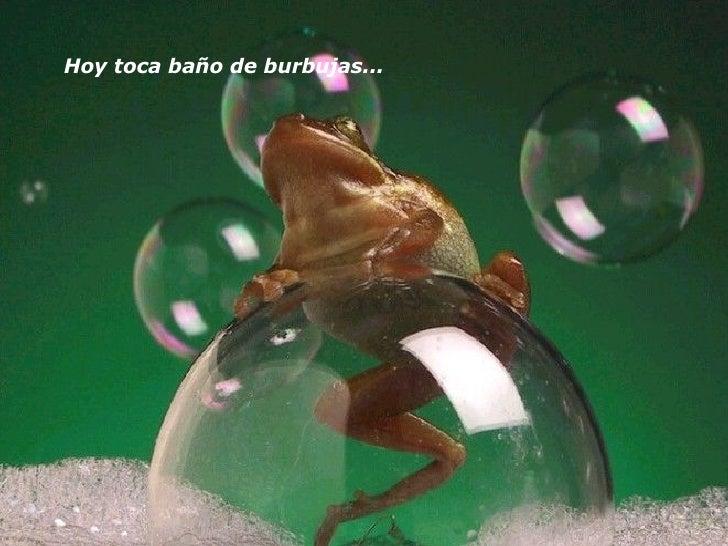 Hoy toca baño de burbujas...
