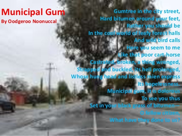 Municipal gum essay