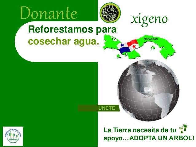 La Tierra necesita de tu apoyo…ADOPTA UN ARBOL! Reforestamos para cosechar agua. Donante xigeno UNETE