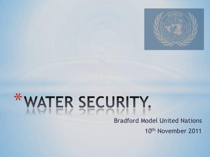*    Bradford Model United Nations              10th November 2011