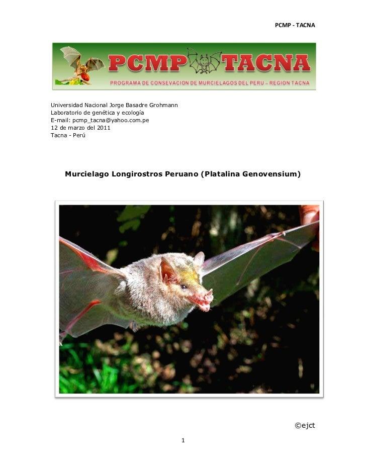 PCMP - TACNAUniversidad Nacional Jorge Basadre GrohmannLaboratorio de genética y ecologíaE-mail: pcmp_tacna@yahoo.com.pe12...