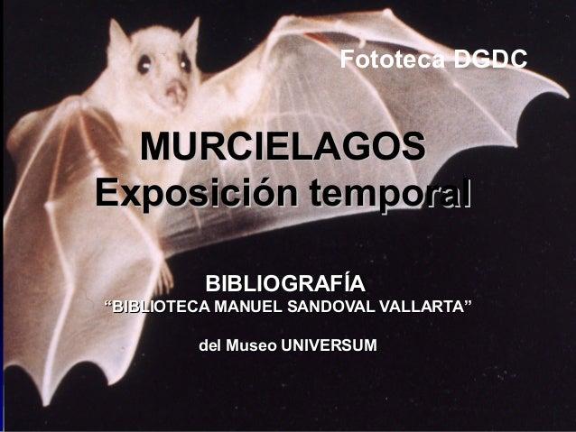 "MURCIELAGOSMURCIELAGOS Exposición temporalExposición temporal BIBLIOGRAFÍABIBLIOGRAFÍA """"BIBLIOTECA MANUEL SANDOVAL VALLAR..."