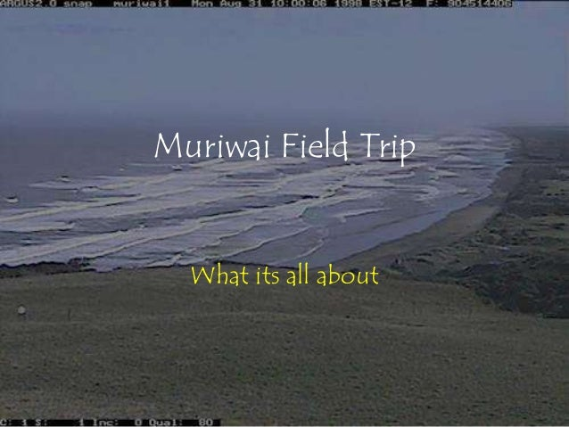 Muriwai Field Trip  What its all about