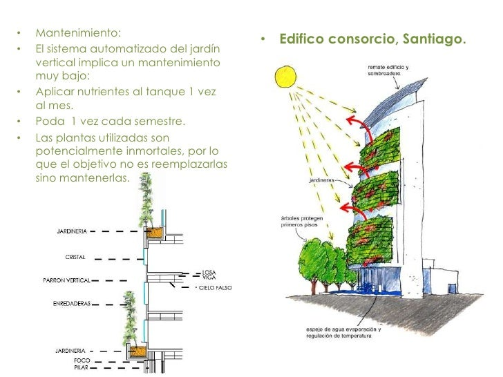 Muros verdes 3 for Sistema de riego jardin vertical