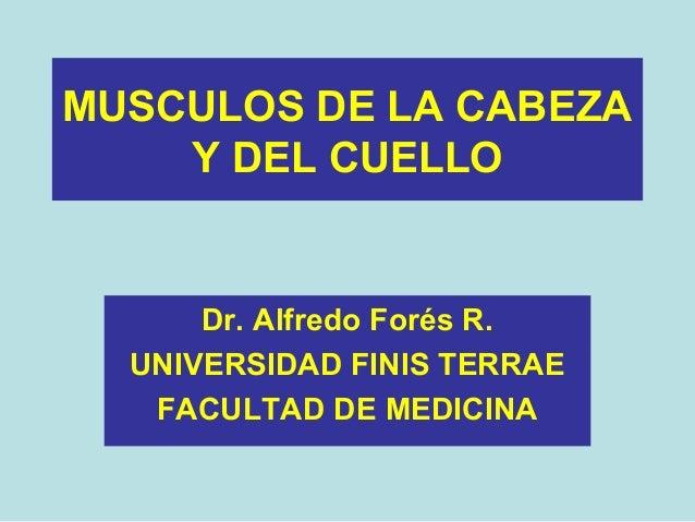 MUSCULOS DE LA CABEZA Y DEL CUELLO Dr. Alfredo Forés R. UNIVERSIDAD FINIS TERRAE FACULTAD DE MEDICINA
