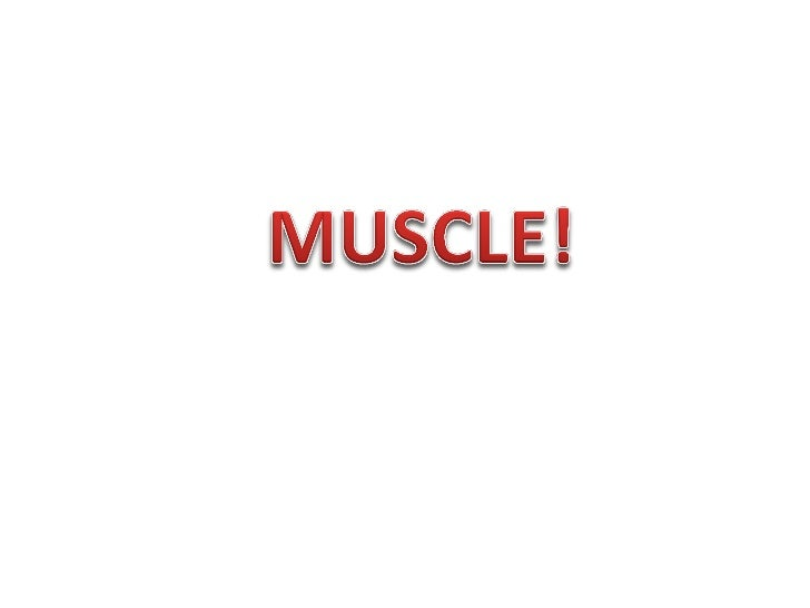 Skeletal Muscle                         The skeletal muscle                         tissue composes                       ...