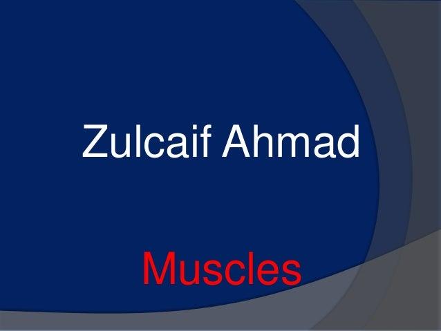 Zulcaif Ahmad  Muscles