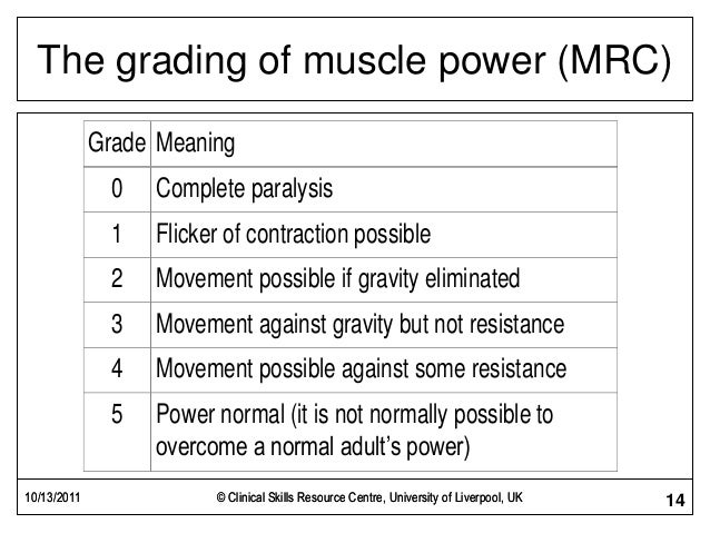 28554 Motorcycle Fork Oils besides Muscle Power And Tone Examination likewise Splenic Trauma 62072179 as well Asia Grading moreover BW10IGdyYWRlcyBjaGFydA. on motor grading scale