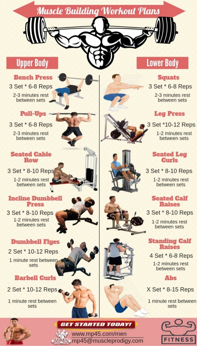 Muscle Building Workout Routine For Men