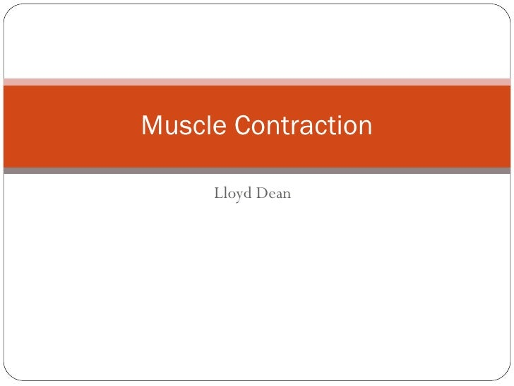types of muscle contractions pdf