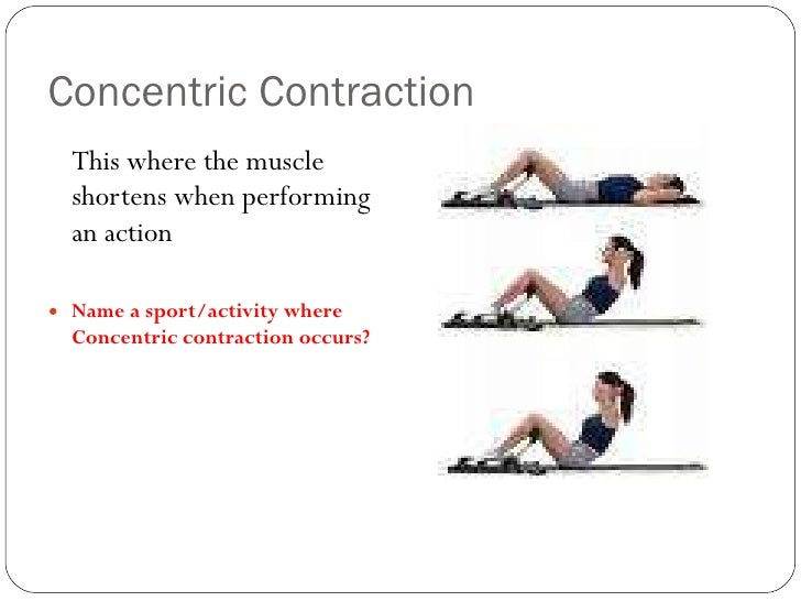 Isometric Contraction Sporting Example Muscle contraction typ...