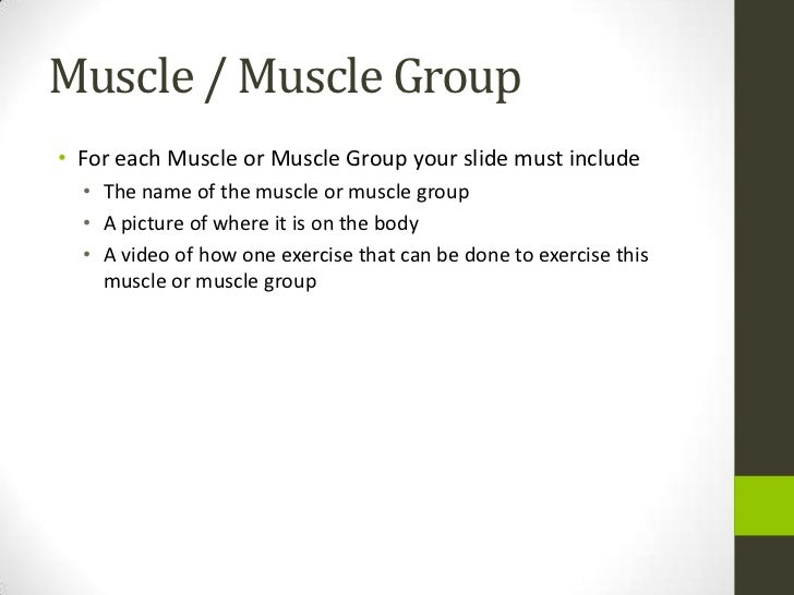 Muscle Groups And Exercises