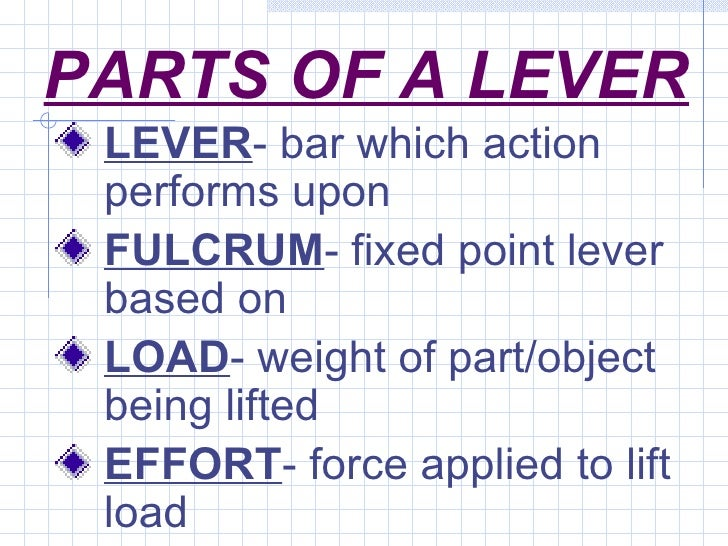Muscle Levers.ppt
