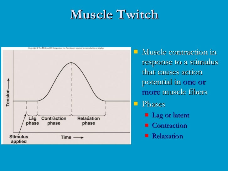 muscle twitch response and recruitment summation Exercise 6: muscle physiology ii – twitch & response for a single twitch muscles recruitment and summation recruitment is increasing the number of.