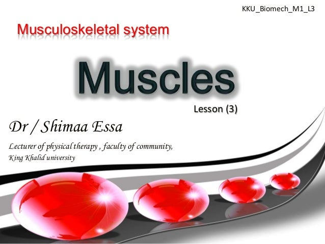 KKU_Biomech_M1_L3  Musculoskeletal system                                                       Lesson (3)Dr / Shimaa Essa...