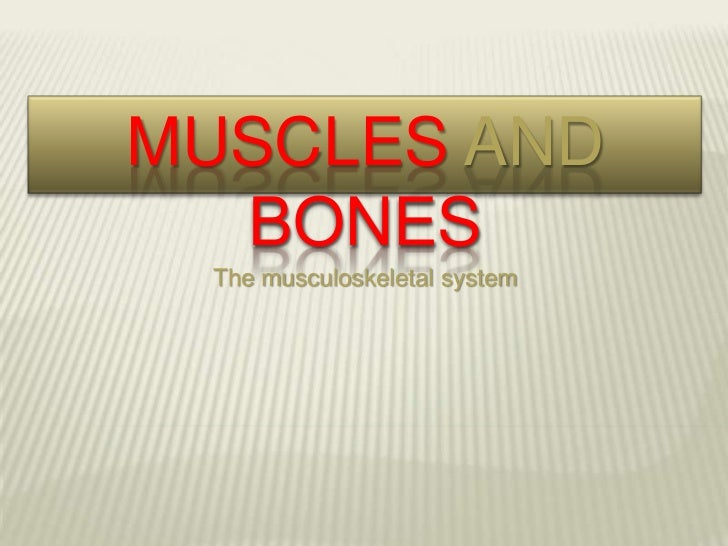 MUSCLES AND  BONES The musculoskeletal system