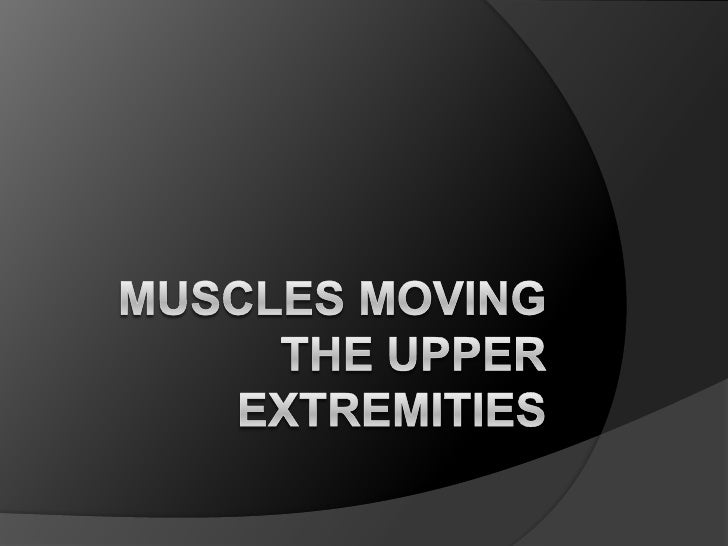 Muscles moving the Upper Extremities<br />