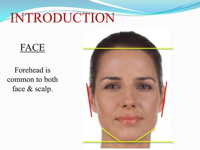 FACIAL MUSCLES Orbital margins & eyelids External nose & nostrils Lips, cheeks & mouth Pinna Scalp Cervical skin    ...