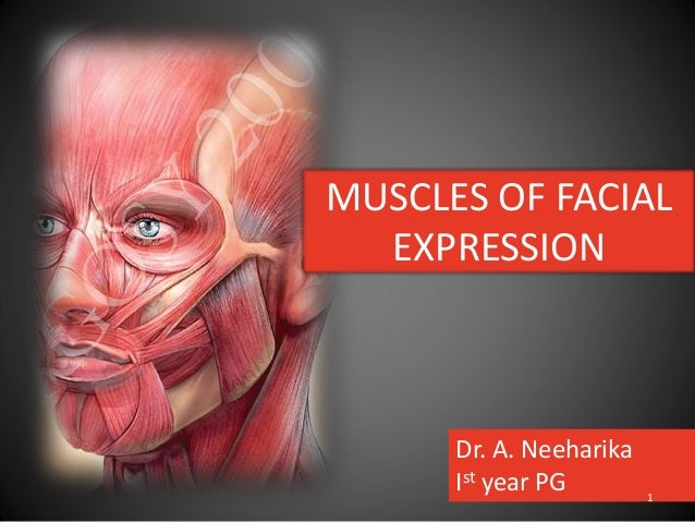 MUSCLES OF FACIAL EXPRESSION Dr. A. Neeharika Ist year PG 1