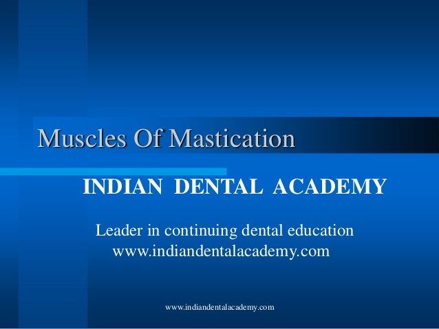www.indiandentalacademy.com Muscles Of Mastication INDIAN DENTAL ACADEMY Leader in continuing dental education www.indiand...