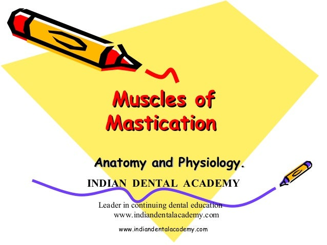 Muscles ofMuscles of MasticationMastication Anatomy and Physiology.Anatomy and Physiology. INDIAN DENTAL ACADEMY Leader in...