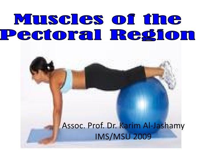Assoc. Prof. Dr. Karim Al-Jashamy          IMS/MSU 2009
