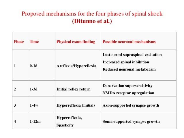 Proposed mechanisms for the four phases of spinal shock (Ditunno et al.)  Phase  Time  Physical exam finding  Possible neu...