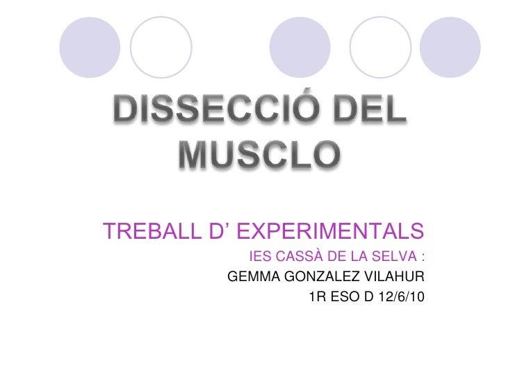 DISSECCIÓ DEL MUSCLO<br />TREBALL D' EXPERIMENTALS<br />IES CASSÀ DE LA SELVA :<br />GEMMA GONZALEZ VILAHUR<br />         ...