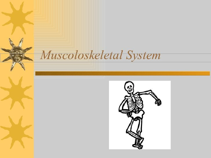 Muscoloskeletal System
