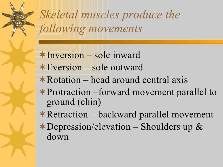 Skeletal muscles produce the following movements <ul><li>Inversion – sole inward </li></ul><ul><li>Eversion – sole outward...