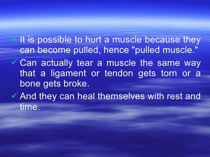 <ul><li>It is possible to hurt a muscle because they can become pulled, hence &quot;pulled muscle.&quot;  </li></ul><ul><l...
