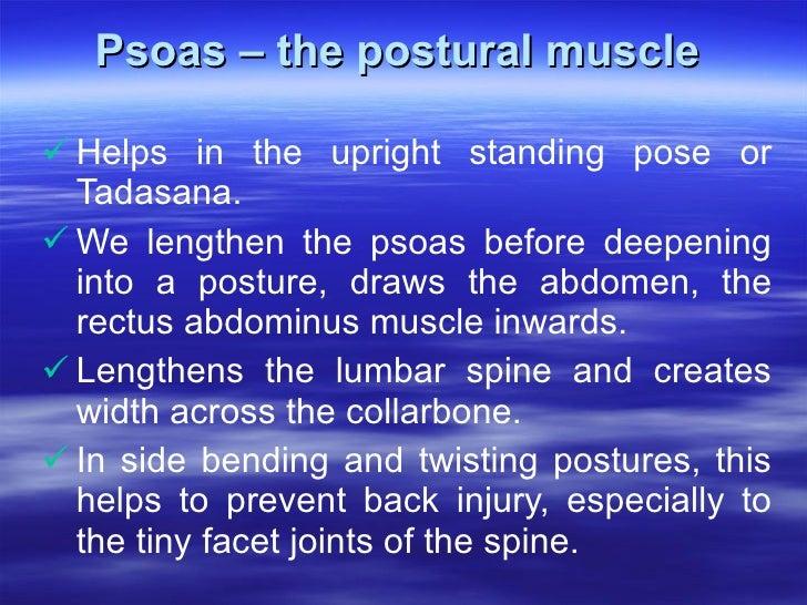 Psoas – the postural muscle  <ul><li>Helps in the upright standing pose or Tadasana.  </li></ul><ul><li>We lengthen the ps...