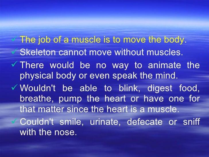<ul><li>The job of a muscle is to move the body .  </li></ul><ul><li>Skeleton cannot move without muscles. </li></ul><ul><...