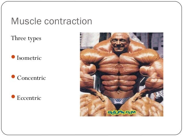 Isometric Contraction Sporting Example Isometric Contraction Muscle