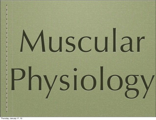 Muscular        PhysiologyThursday, January 17, 13