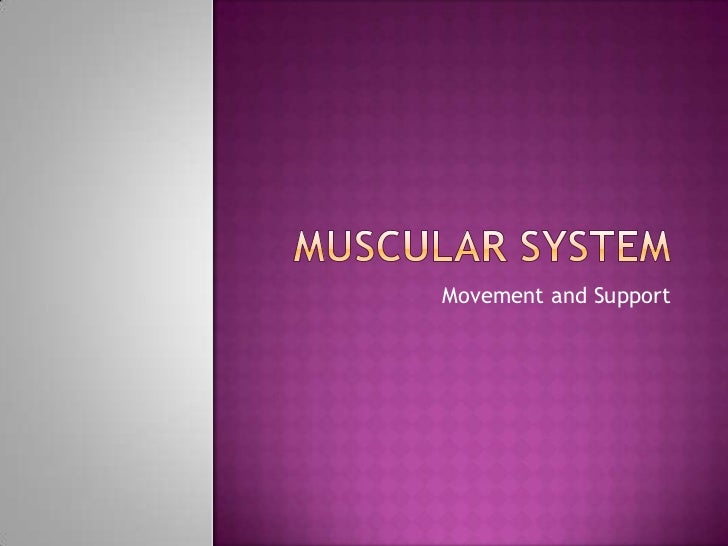 Muscular System<br />Movement and Support<br />