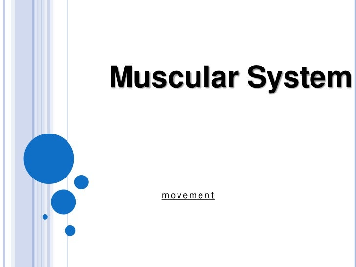 Muscular System<br />movement<br />