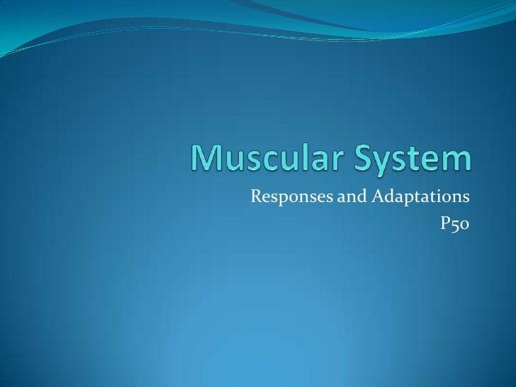 Responses and Adaptations                      P50